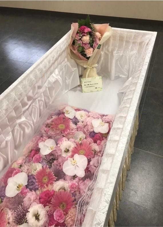 ファミリーホール高津、華布団火葬プラン
