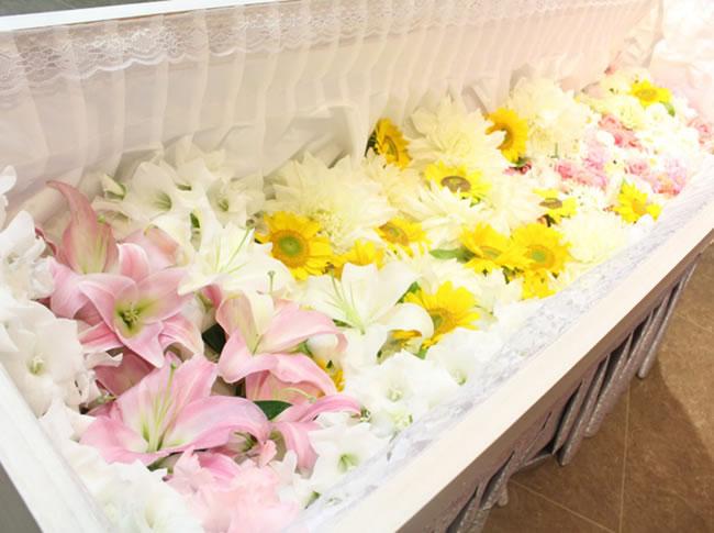 ファミリーホール高津、花いっぱい火葬プラン