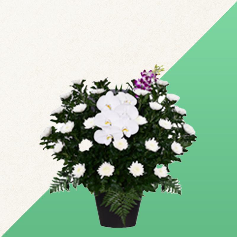 ファミリーホール高津の供花、白菊 16,500円